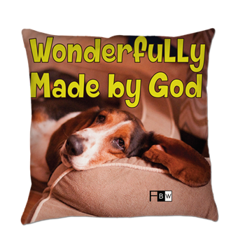 FBW Pillows of Faith for Kids